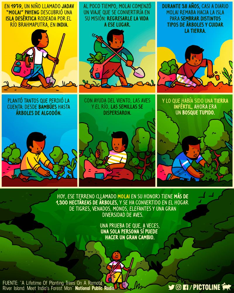 No podía tener hijos así que decidió plantar árboles en la India 2