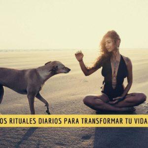 El poder del ritual o cómo convertir las actividades cotidianas en prácticas conmovedoras 5