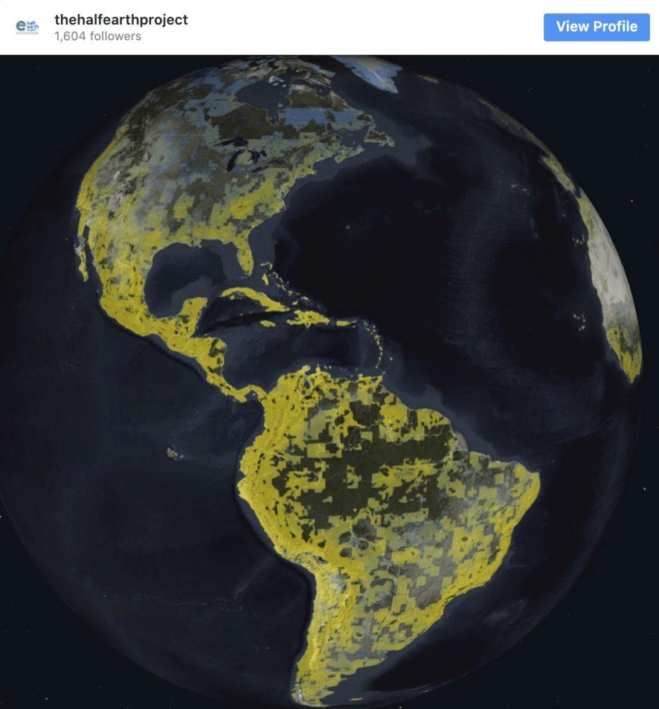 El esperanzador proyecto que quiere convertir la mitad del planeta en una gran reserva natural 2